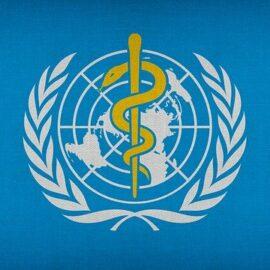 Was ist die Weltgesundheitsorganisation (WHO) und woher fließt Geld?