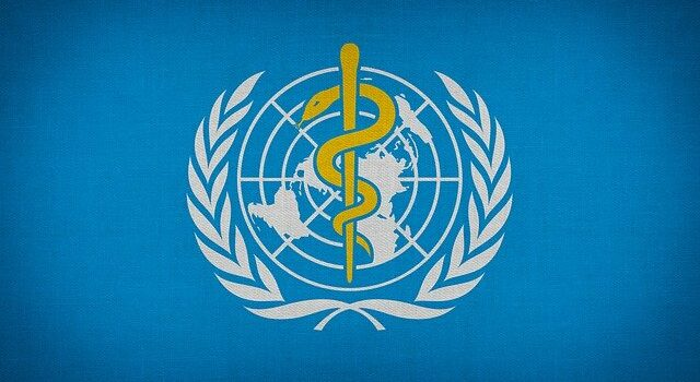 Was macht die Weltgesundheitsorganisation